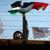 featured image for Amal Ahmad policy brief, by Issam Rimawi / APAimages