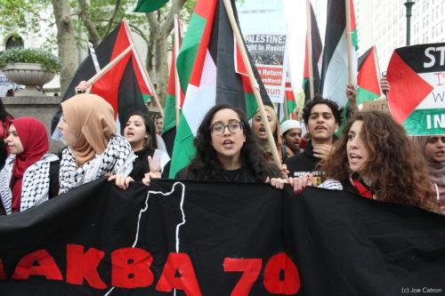 PLO report