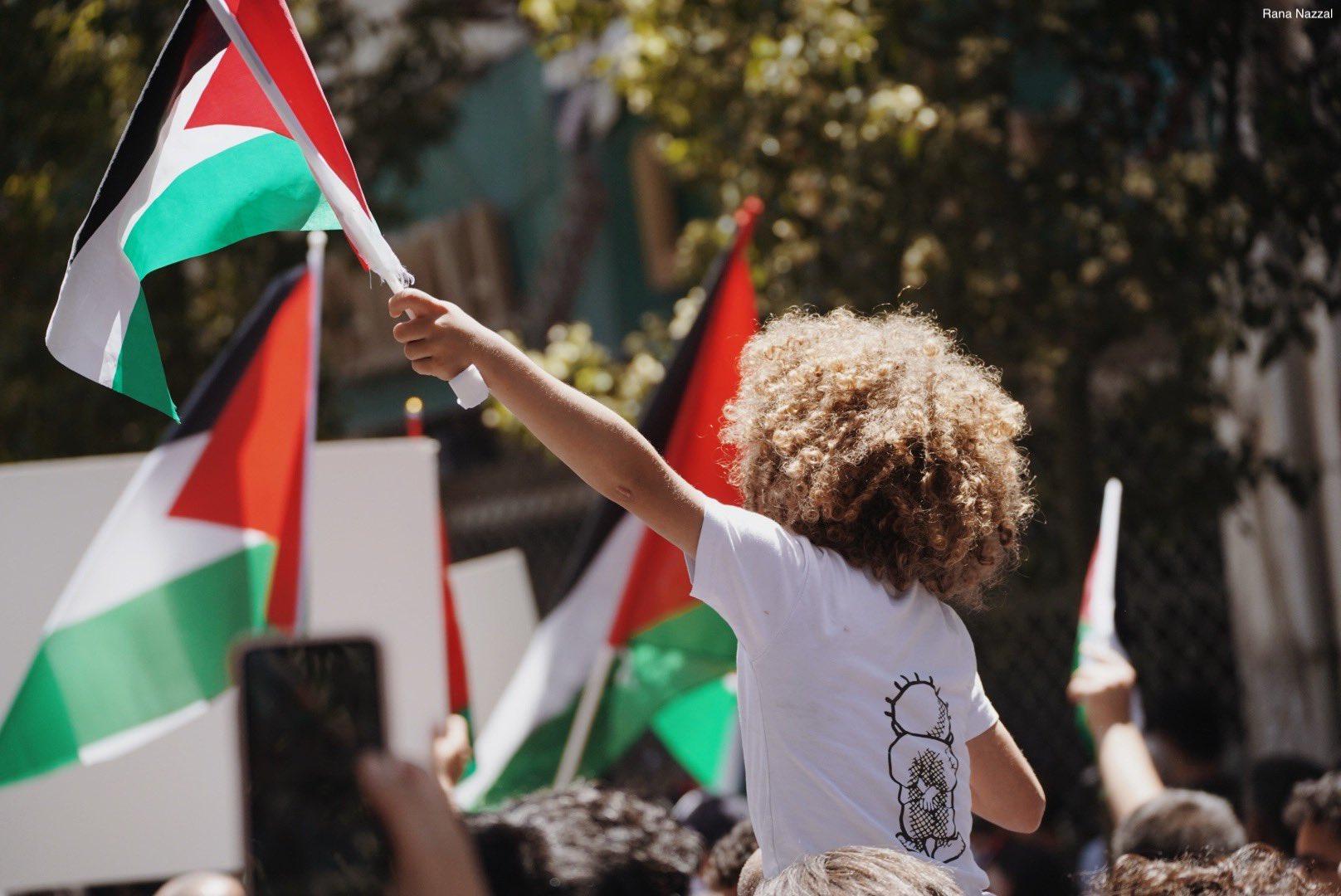 unity intifada palestine sheikh jarrah protest